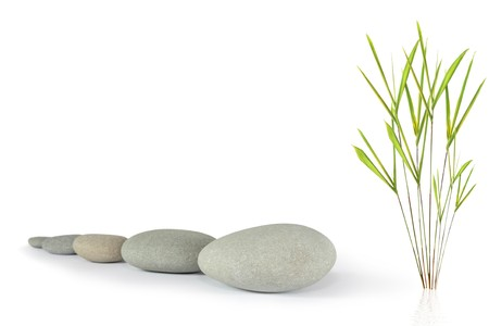 Zen abstract of  grey stones with bamboo leaf grass, over white background. Focus on the front stone. photo