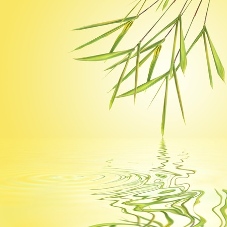 tough luck: Bamboo leaf grass over golden yellow background with a white glow and reflection in rippled water. Stock Photo