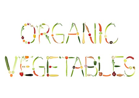Vegetable selection spelling the words organic vegetables, over white background. photo