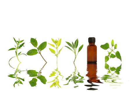 Herb leaf sprigs and an aromatherapy essential oil bottle with reflection in rippled water, over white background.