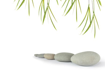 Zen abstract of grey stones with bamboo leaf grass, over white background. Focus on the front stone.