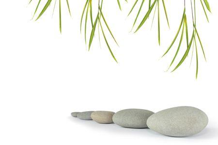 alineaci�n: Zen resumen de las piedras grises de bamb� con hojas de hierba, sobre fondo blanco. Centrarse en el frente de piedra.