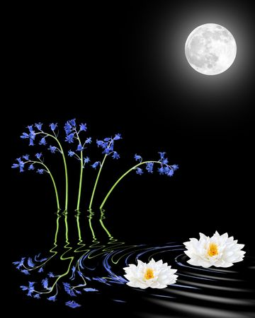 equinox:  Bluebell and white lily flower abstract with reflection in rippled water and glowing full moon on the spring equinox, over black background.