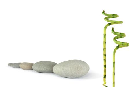 Zen abstract of grey stones in a line with lucky bamboo leaf grass, over white background. Focus on the front stone. photo