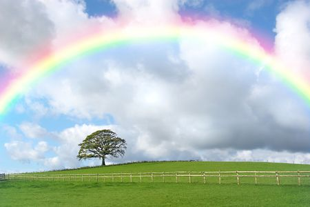 Rural landscape in autumn with an oak tree  and a field with a wooden fence, set against a blue sky with cumulus storm clouds and a rainbow. photo