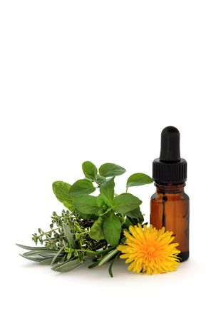remedy: Herb leaf sprigs of lavender, sage, thyme and oregano with a dandelion flower and aromatherapy essential oil dropper bottle, over white background.