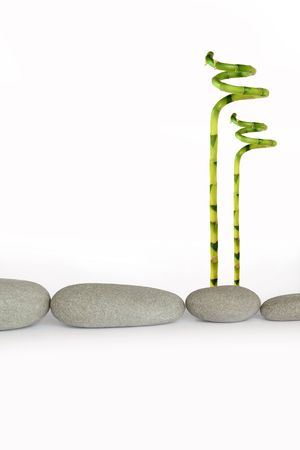 tough luck: Zen abstract of natural grey stones in a horizontal line with lucky bamboo grass, over white background.