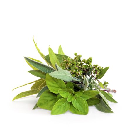 Herb leaf and flower selection of bay, oregano, sage and thyme, over white background. Stock Photo - 4944077