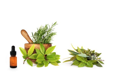 Herb leaf  selection in a mortar with pestle and  aromatherapy essential oil dropper  bottle, over white background. Stock Photo - 5022804