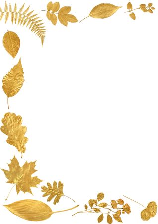 Golden leaf selection forming an abstract frame over white  background.