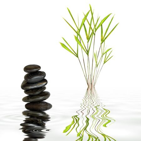 Bamboo leaf grass and spa stones in perfect balance with reflection in rippled grey water, over white background. photo