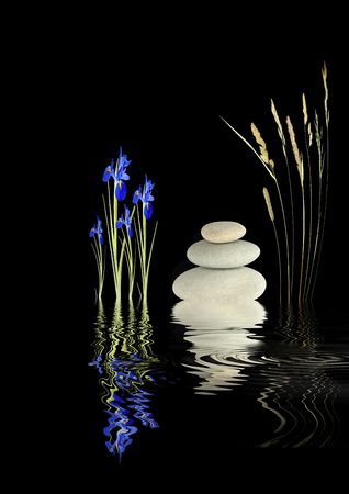 ambience: Zen abstract garden with iris flowers, wild grass stems and grey spa stones in perfect balance with reflection over rippled water, over black background.