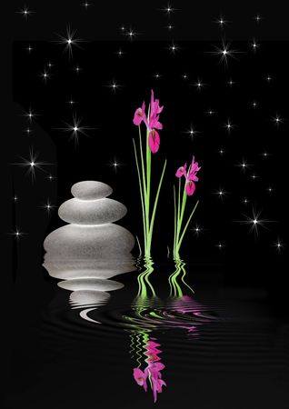 Zen garden fantasy abstract of  red iris flowers and  glowing gray spa stones in perfect balance with reflection over rippled water, set against a black sky with stars. Stock Photo - 5487241