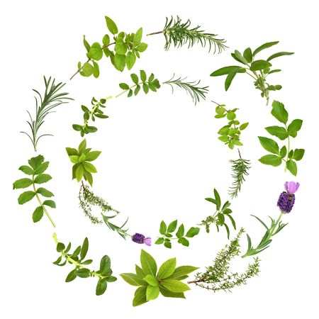 Medicinal and culinary herbs in a circular design, over white background.