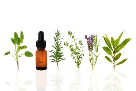 homeopathy: Salvia, lavanda, Romero, tomillo de limón y hierbas de laurel, con una botella de gotero de aceite esencial de aromaterapia, sobre fondo blanco con la reflexión.