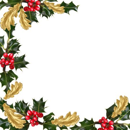 thorn: Holly leaf sprigs with red berries and gilded oak leaves forming an abstract border over white background.