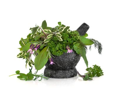 Herb leaf selection of sage, rosemary, parsley, fennel, sorrel , angelica and  lavender with flowers with a granite mortar with pestle, over white background. Stock Photo - 5723526
