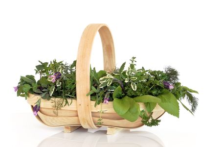 Fresh herb leaf selection in a rustic wooden basket , over white background with reflection. Stock Photo - 5766212