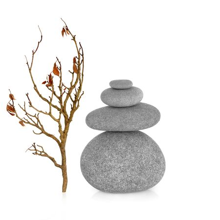Zen earth element abstract of an ivy branch and grey stones in perfect balance, over white background. photo