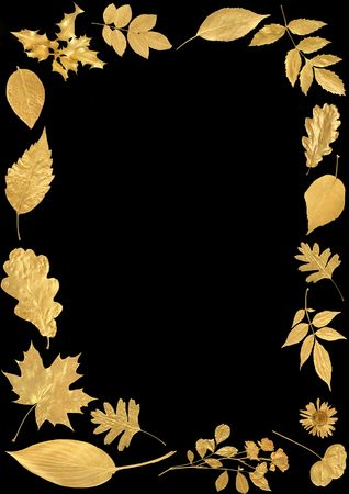 Golden leaf selection forming an abstract frame over black background. photo