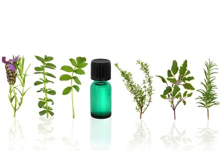Herb and flower leaf selection with an aromatherapy essential oil glass bottle, over white background. Stock Photo