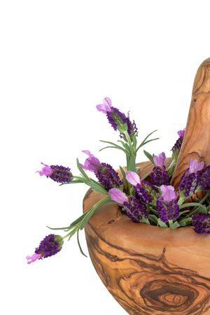 Lavender herb flowers in an olive wood mortar with pestle, over white background. photo