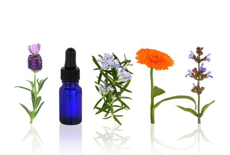 Lavender, rosemary, marigold and sage herbs in flower with an aromatherapy essential oil blue glass dropper bottle in a line, over white background with reflection. Stock Photo - 5957993