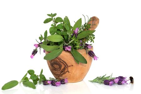 Lavender flowers and mixed herb leaves in an olive wood mortar with pestle with a bumblebee next to a floral sprig,  over white background. photo