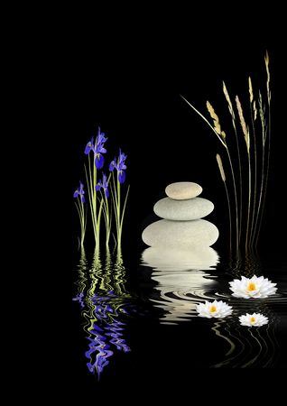 Zen  garden abstract with  grey spa stones  in perfect balance, blue iris and white lotus lily flowers with grass stems  and  reflection in rippled water, over black background.