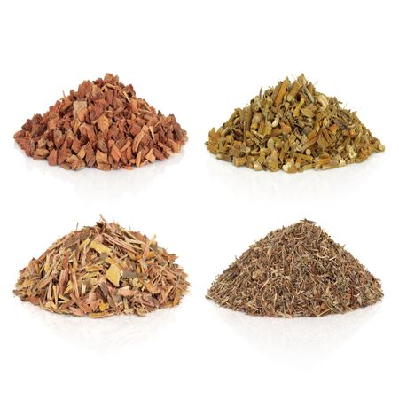 Dried medicinal herbs also used to make magical potions, oak bark, mistletoe, willow bark and eyebright, over white background.