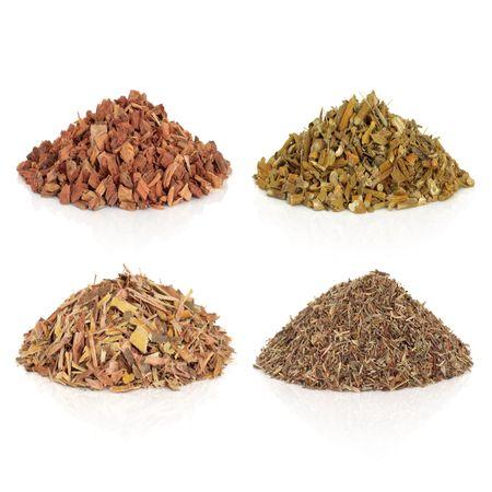 sauce: Secado de hierbas medicinales, también utilizadas para hacer pociones mágicas, corteza de roble, Mistel, corteza de sauce y eyebright, sobre fondo blanco.