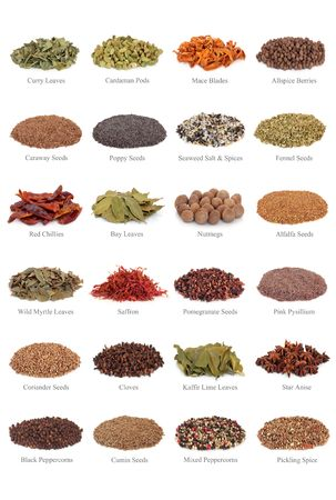 Spice and herb leaf selection with titles, isolated over white background. photo