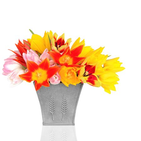 Red, yellow and pink tulip flowers in a pewter vase, isolated over white background. Stock Photo - 6227005