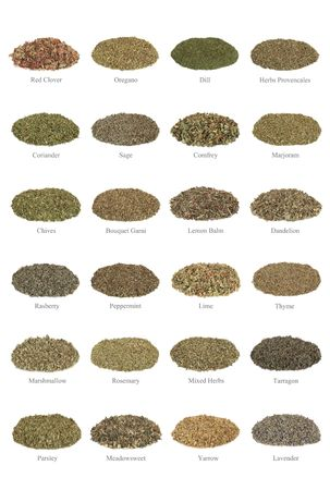 dried herb:  Large collection of dried herbs, with titles isolated over white background.