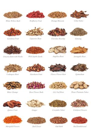 Large chinese medicine herb collection with titles, isolated over white background.