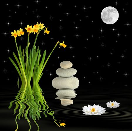 starlight: Zen fantasy abstract of a spring garden at night with narcissus and lotus lily flowers, grey spa stones in perfect balance, with a full moon on the equinox with stars and reflection over rippled black water.