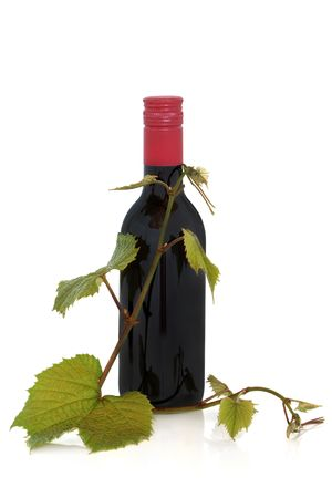 Red wine bottle with grape leaves isolated over white background with reflection. Stock Photo - 6698582