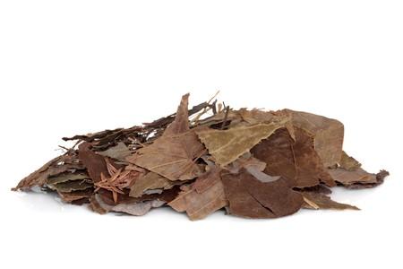 Hojas de hierba de Epimedium utilizados en la medicina herbal China tradicional, aislada sobre fondo blanco. Ying yan huo, Herba epumedii. Equivalente en la actualidad es viagra.  Foto de archivo - 7007655