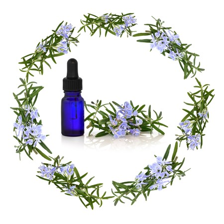 Rosemary herb flowers forming a circular garland with aromatherapy essential oil blue glass dropper bottle in the centre with flower and leaf sprig, isolated over white background. photo