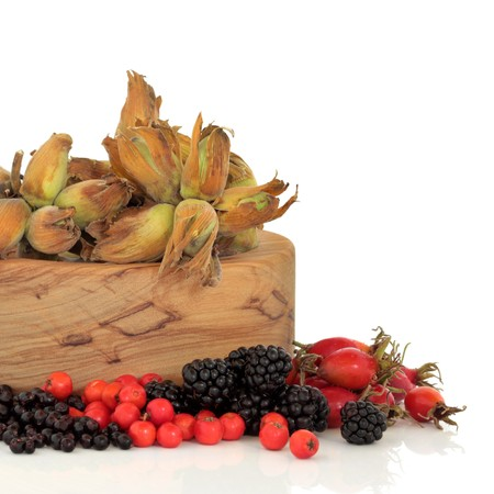 Wild food of autumn of rose hip, elderberry, blackberry and rowan berry with fresh hazelnuts in an olive wood bowl, isolated over white background. photo