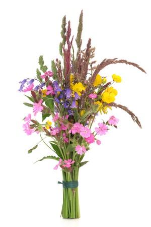 flor silvestre: Flores silvestres de primavera y variedades de c�sped empataron en un mont�n aislado sobre fondo blanco.  Foto de archivo