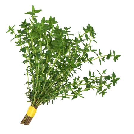 Thyme herb leaves tied in a posy isolated over white background.