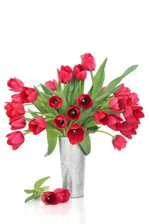 Red tulip flower arrangement in a distressed aluminum vase, isolated over white background. photo
