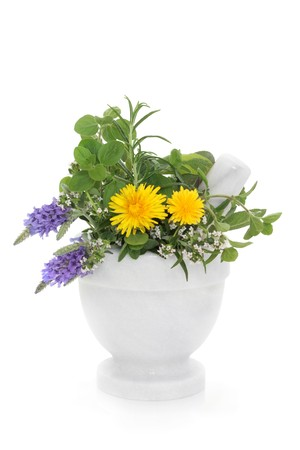 Herb and wildflower selection of lavender, thyme, rosemary, marjoram and dandelion flowers in a marble mortar with pestle, isolated over white background. photo