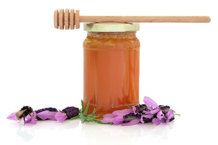 Lavender flowers and bumble bee with honey jar and wooden dropper stick, isolated over white background with reflection. photo