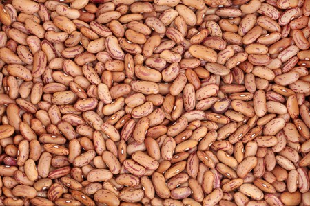 pinto: Pinto bean pulses forming a textured  background.