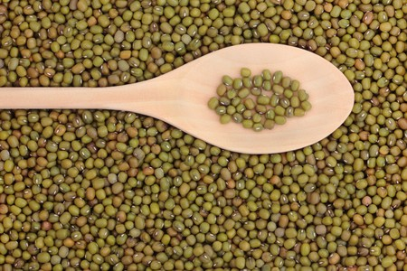 pulses: Mung berken bean pulses in a wooden spoon forming a background.