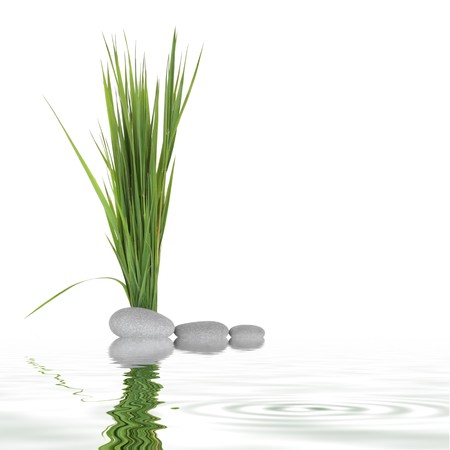 Zen abstract of grey spa stones and grass isolated over white background with reflection in rippled water. photo