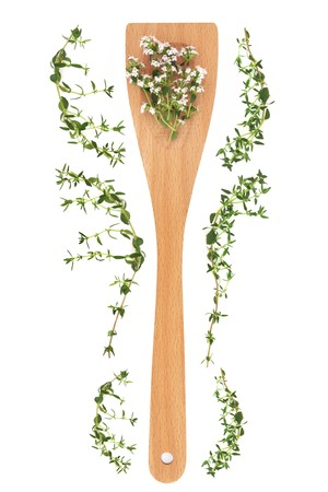 Lemon thyme herb flower and leaf sprigs in a wooden cooking spoon and scattered, isolated over white background. Thymus. Stock Photo - 8176854