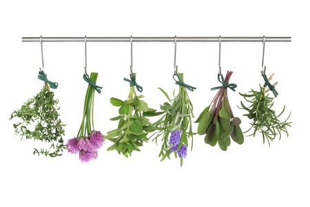 dried herb: Herb leaf and flower tied in bunches hanging and drying on a stainless steel pole , isolated over white background. Stock Photo